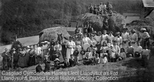 Haymaking in Llandysul