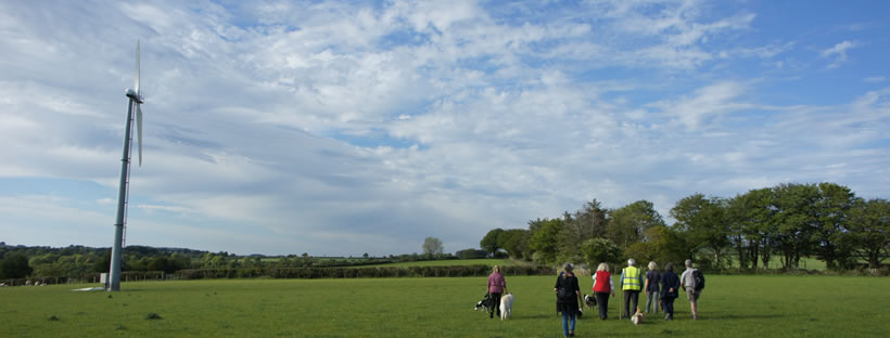 Walking with dogs, crowd of people. Wind turbine on left.