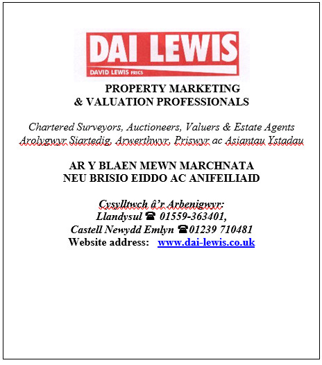 Dai Lewis: property marketing and valuation professionals.