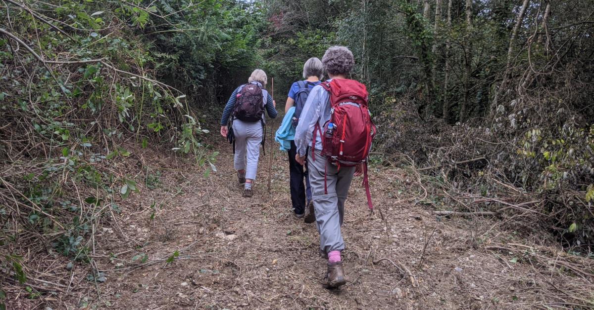 Llandysul Walking Weekend 2021 Afon Ceri Walk