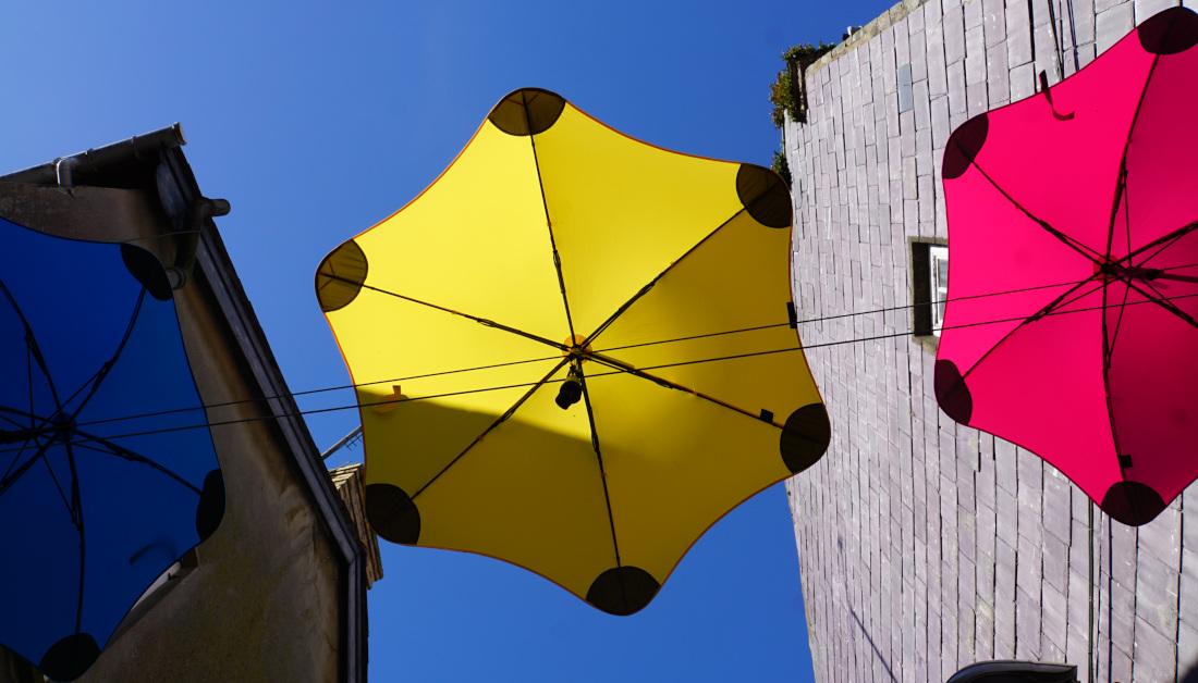 Blue, Yellow, Red umbrellas hanging on the umbrella canopy. Ceredigion.